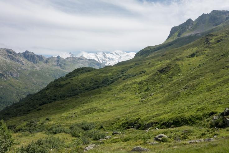 chamonix_Mont_Blanc_Juli_2017-77